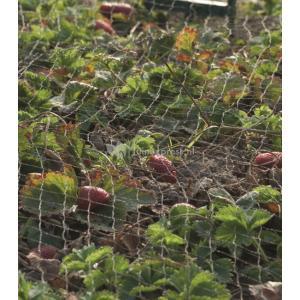 Tuinnet grofmazig