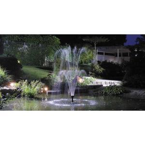 Aquarius fountain Set Classic fonteinpomp